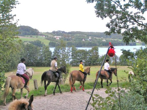 Horse riding, carriages